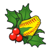 Christmas Gifts for Softball Fans