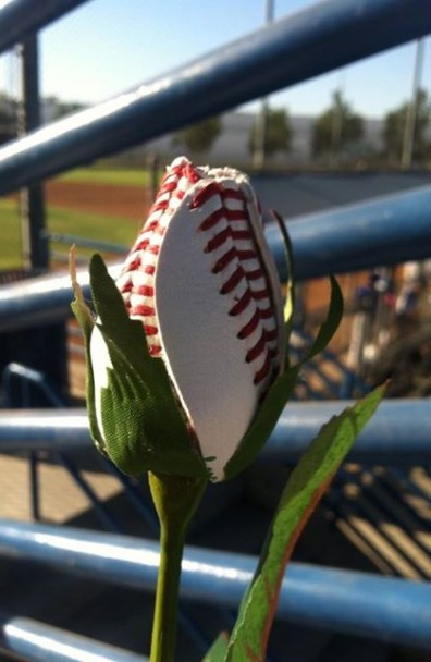 Rally Rose makes an appearance at Sons Game
