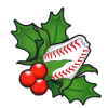Christmas Gifts for Special Baseball Fans