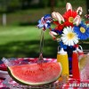 Celebrating America with Sports Roses
