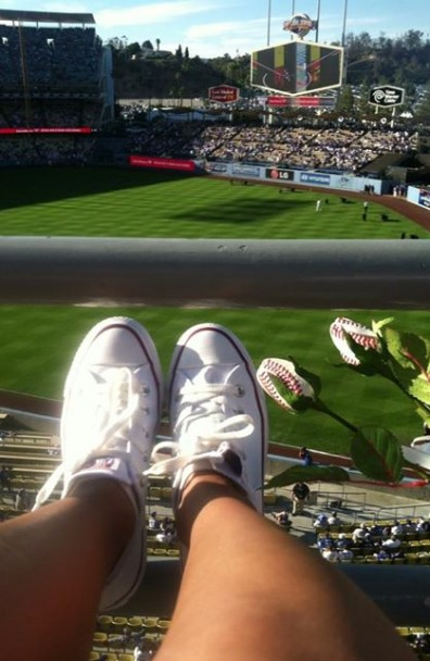 Just watching the game – Baseball Roses at 2013 NLDS Game 3
